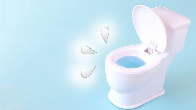 トイレリフォーム中のトイレはどうなるの?